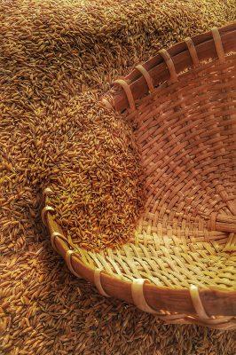 agrilcutural grain moisture sensors